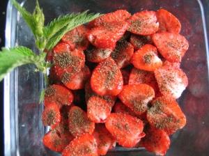 Erdbeeren mit Brennnesselsamen
