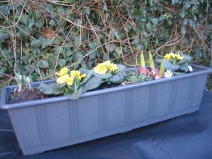 winterlicher Blumenkübel