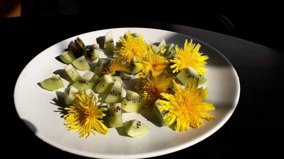 Löwenzahnblüten mit Kiwi
